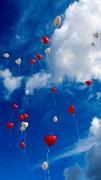 """Москитная сетка """"Воздушные шары в облаках"""""""