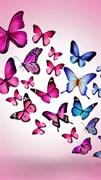 """Москитная сетка - """"Бабочки. Разноцветные"""""""