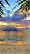 """Москитная сетка - """"Пляж. Тропики"""""""