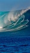 "Москитная сетка - ""Море. Волна"""